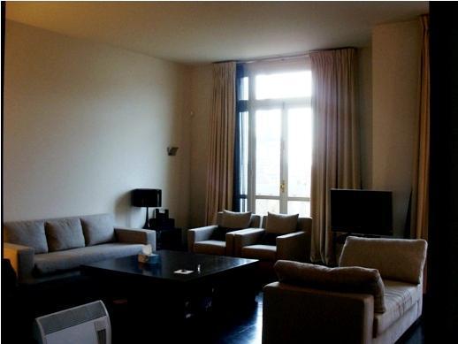 dapper Tour Eiffel - Place des Etats Unis luxury apartment and vacation rental