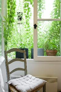 a chair and French window with potted plants in a Paris luxury apartment