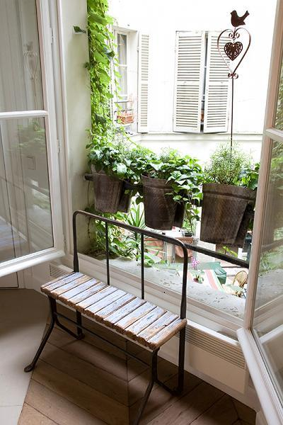 tall French windows with potted plants in Paris luxury apartment