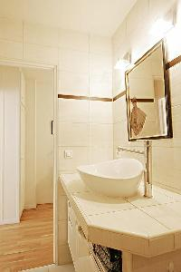 modern bathroom with a spacious standing shower, a sink, and a hairdryer in a 1-bedroom Paris luxury