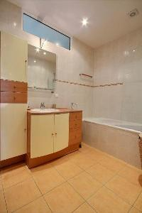 an en-suite bathroom twith a sink, a bathroom cabinet, a mirror, and a shower area in a 2-bedroom Pa
