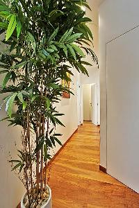 hallway with potted plants in a 2-bedroom paris luxury apartment