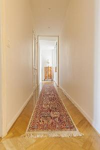 lovely, exotic rug in Cannes - Carnot luxury apartment
