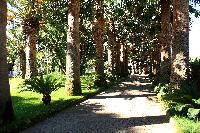 awesome garden of Villa Dei D'Armiento luxury apartment