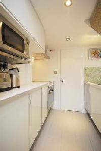 cool modern kitchen of London Framery 5 luxury apartment