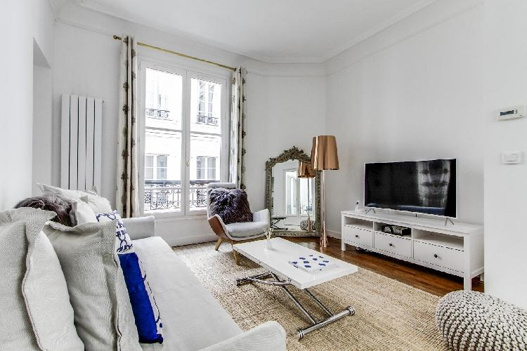 newly renovated and furnished 2 bedroom 1 bathroom Paris luxury apartment