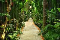 lovely and lush garden of Bali - Legian Ini Vie Villa 2BR luxury apartment